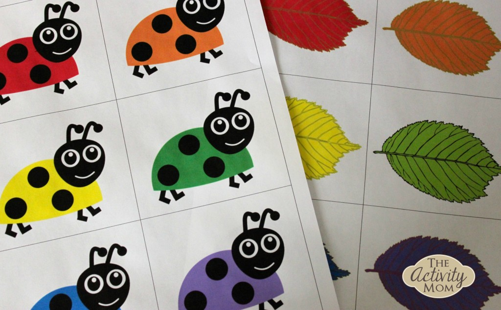 Bug Color Matching Game And Activity