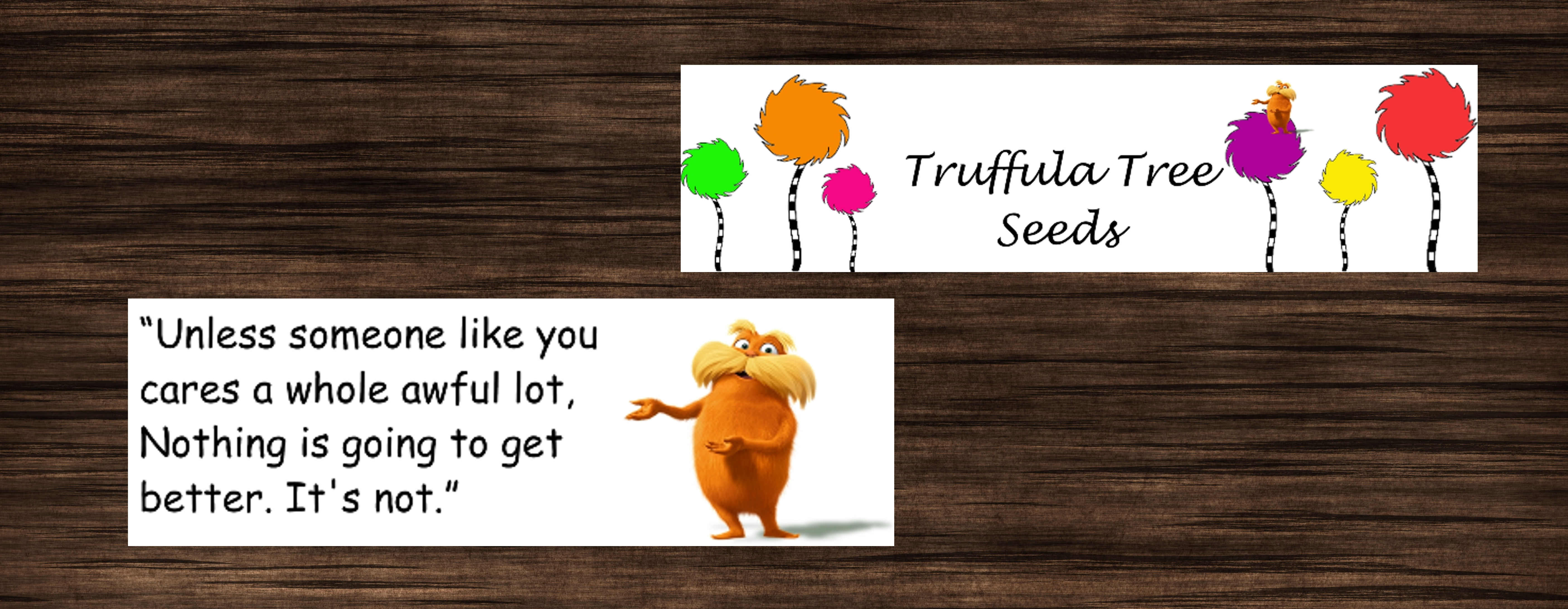 graphic relating to Truffula Seeds Printable named truffulaseedsfeature-001 - Printables 4 Mother