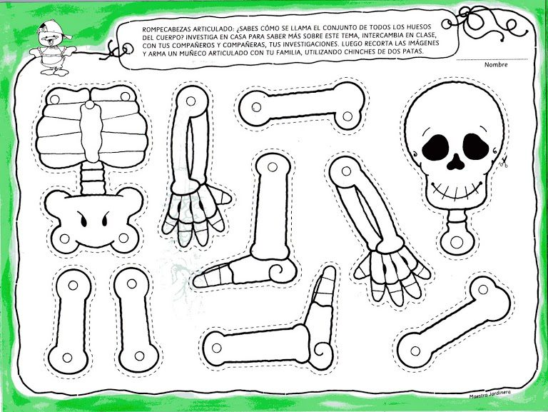 image relating to Skeleton Stencil Printable titled 9 Printable Skeleton Crafts - Printables 4 Mother