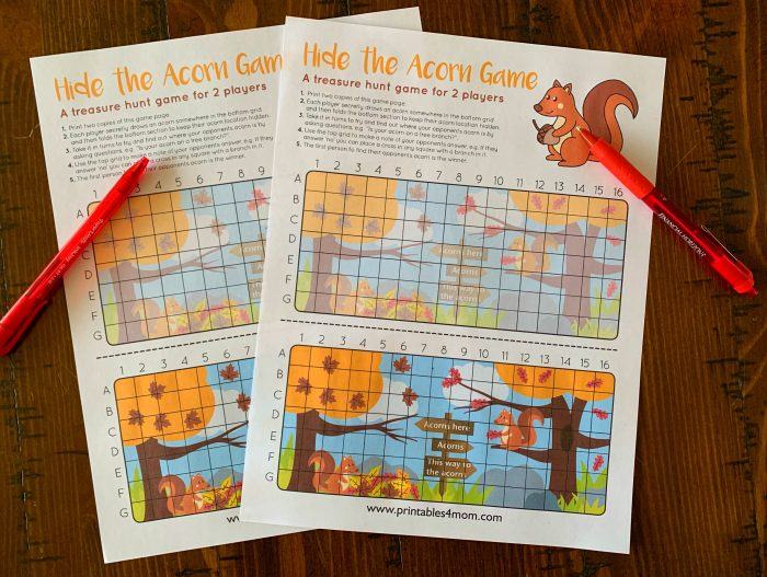 Hide the Acorn Game Free Battleship type game